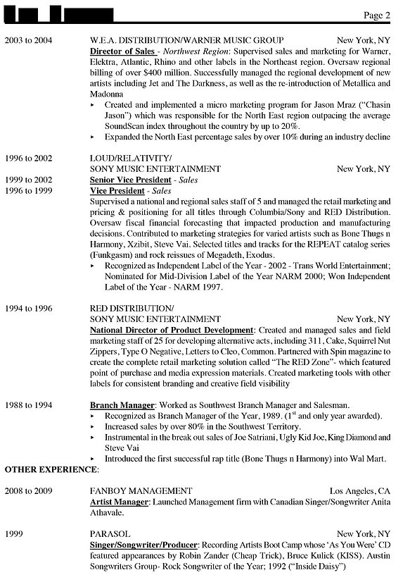 Executive resume Sample 2