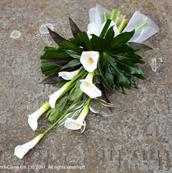 Sheaf simplicity Funeral Tributes