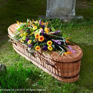RIP Green Burial Tributes