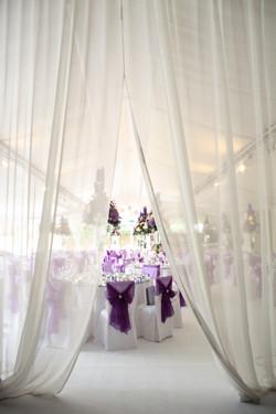White wedding carpet