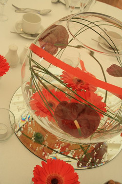 Corporate Party and events (2)