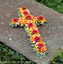 Cross Tributes
