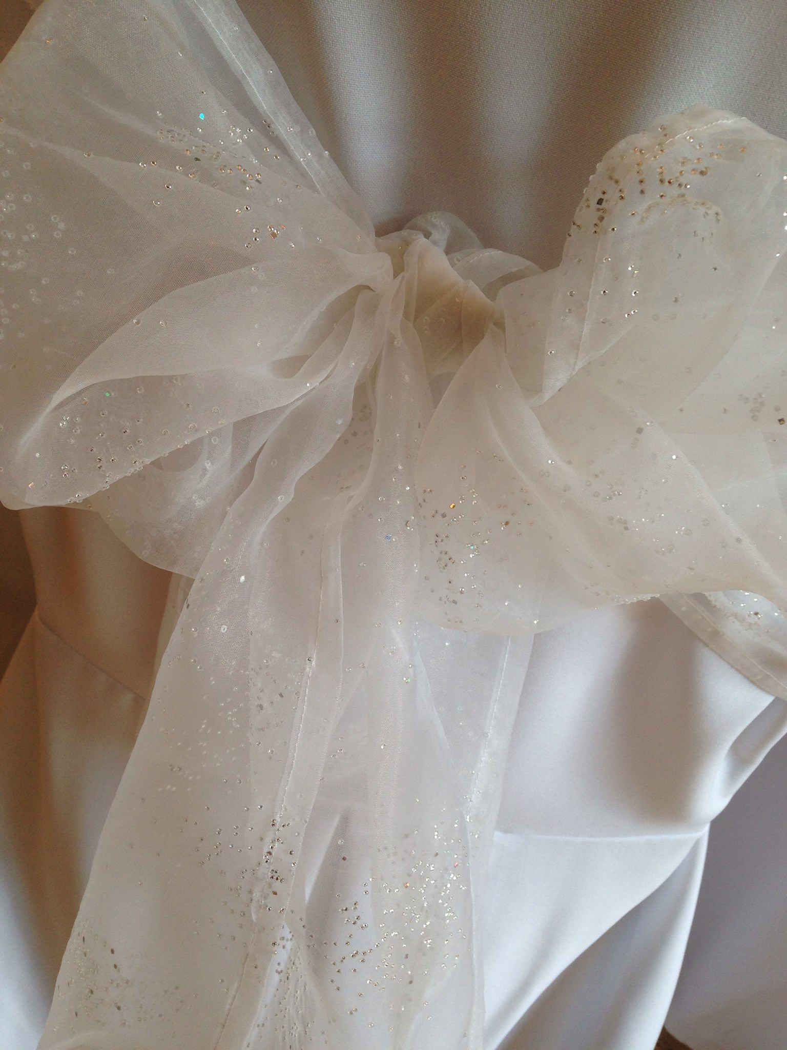 white organza and gold sparkles sash.jpg