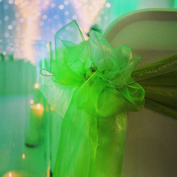 Essex chair covers and green organza