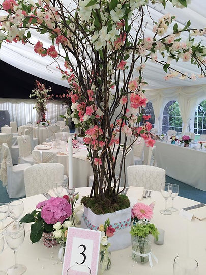 All year round Silk Blossom Trees for Wedding Hire - CONTACT US - for hire and delivery costs