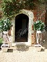 Bay tree hire for your wedding