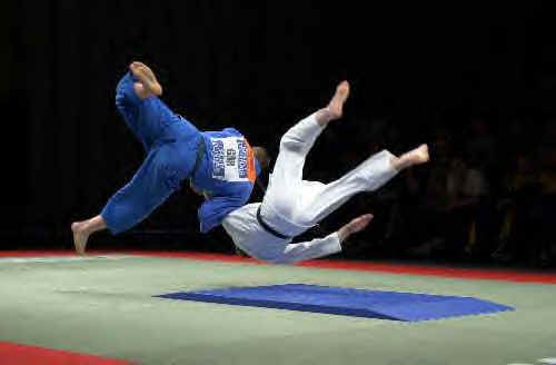 Armatiaux-Judo