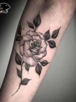 Rocky - traditional tattoo Ink Panthers Echt Tattooshop Limburg Tattoo
