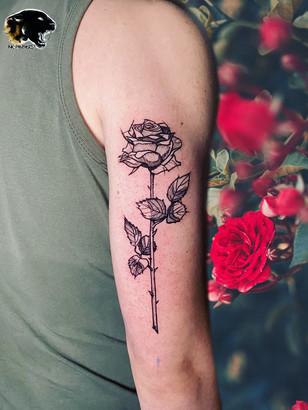 Quincy / Kwills - rose tattoo Ink Panthers Echt Tattooshop Limburg Tattooc