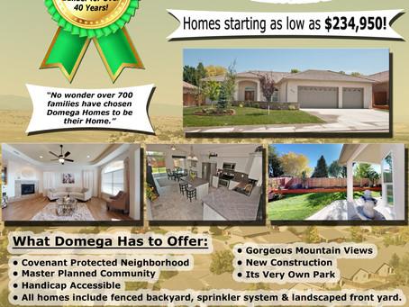Why Choose Domega?