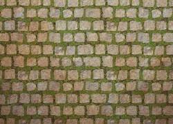 Moss Among Stones Floor 5x7