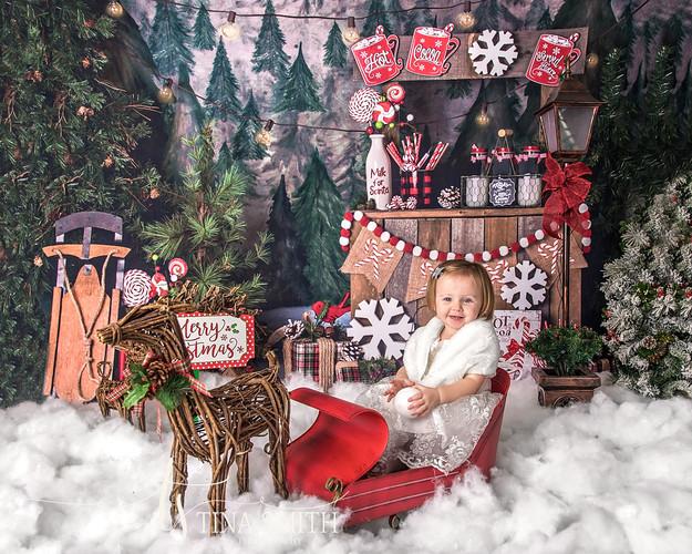 crestview photographer mini sessions christmas