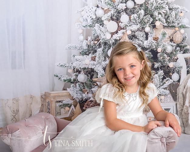 30a photographer mini sessions christmas