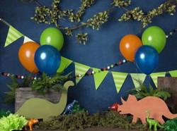 Dino Birthday 60x80
