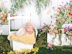 crestview newborn photographer.jpg