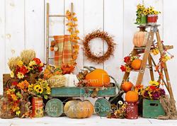 pumpkin wagon 6x8