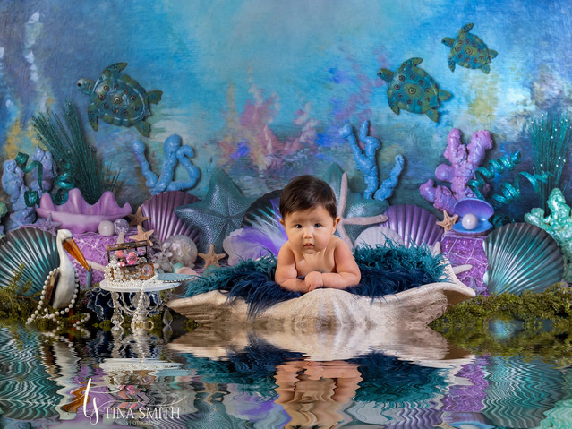 3 month session baby photography nicevil