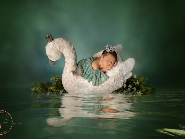 defuniak springs newborn photography-11.