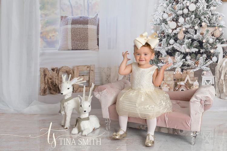 defuniak springs photographer mini sessions christmas