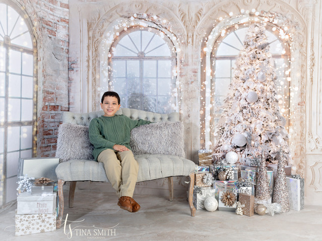 christmas mini sessions defuniak springs