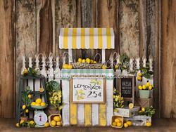 Lemonade Day - 8x8