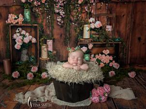 defuniak springs photographer newborn ph
