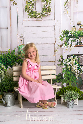 niceville photographer mini sessions spring
