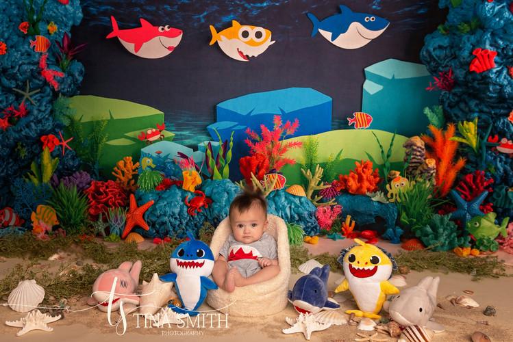defuniak springs studio childrens photography