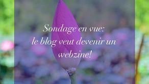 Sondage en vue: le blog veut devenir un webzine!