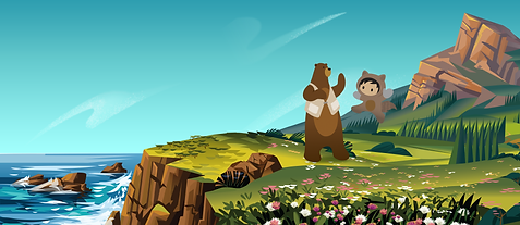 Salesforce_BG_large.png
