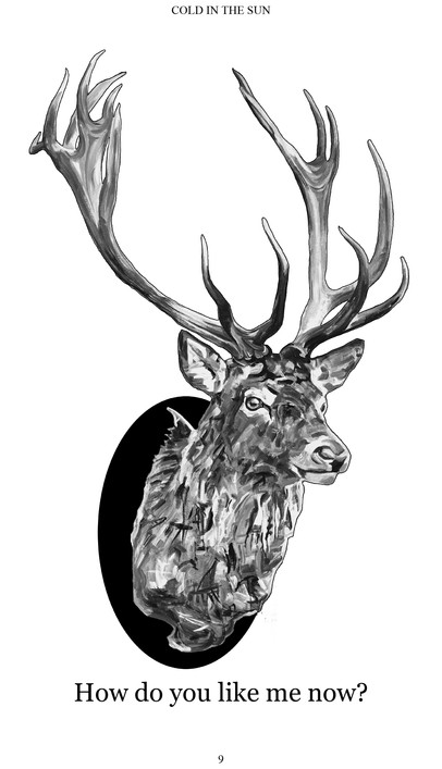 Cold in the sun book page stag for web .