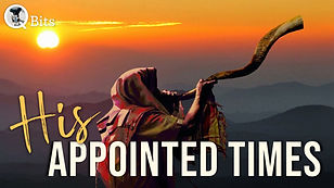451 - HIS APPOINTED TIMES.jpg