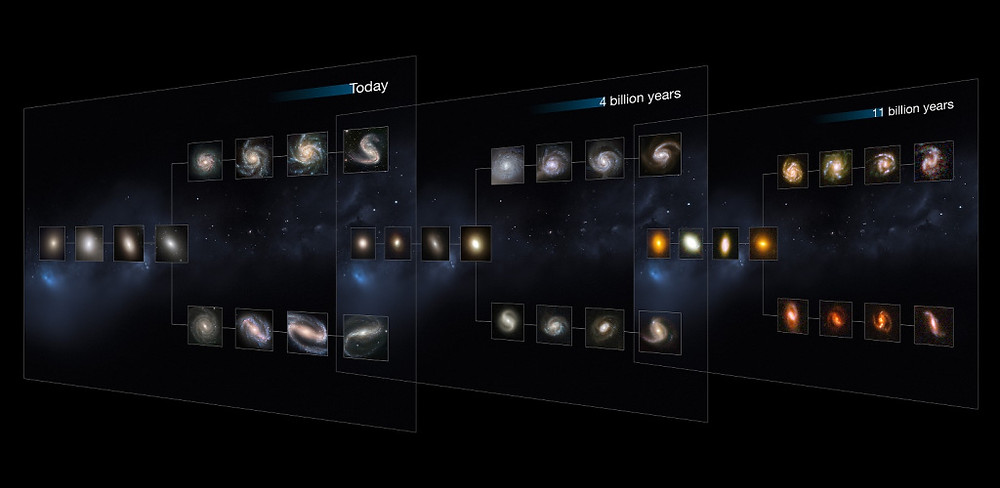 The_Hubble_Sequence_throughout_the_Universe's_history