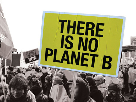 An Inability to Act: There is no Planet B