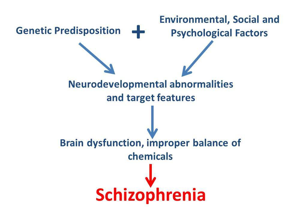 Schizophrenia_flowchart