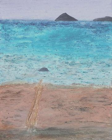 Galapagos - Floreana