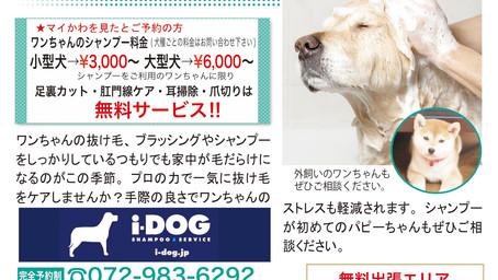 【アイドッグシャンプーサービス】 愛犬のシャンプーはお任せください。自宅までお伺いします。