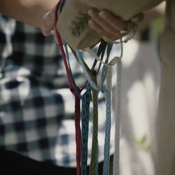 Handfasting with cords