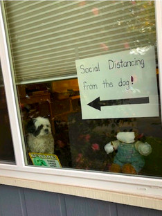 Social Distancing from Bear
