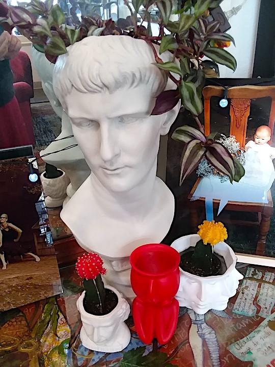 Caligula in the house!