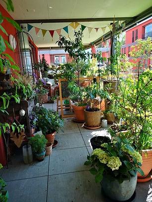 balkon-garten-impression-juni.jpg