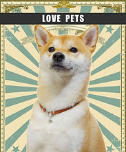 LOVE-PETS.jpg