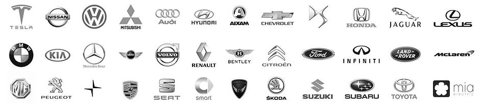 Car Logos.EV.BW.png