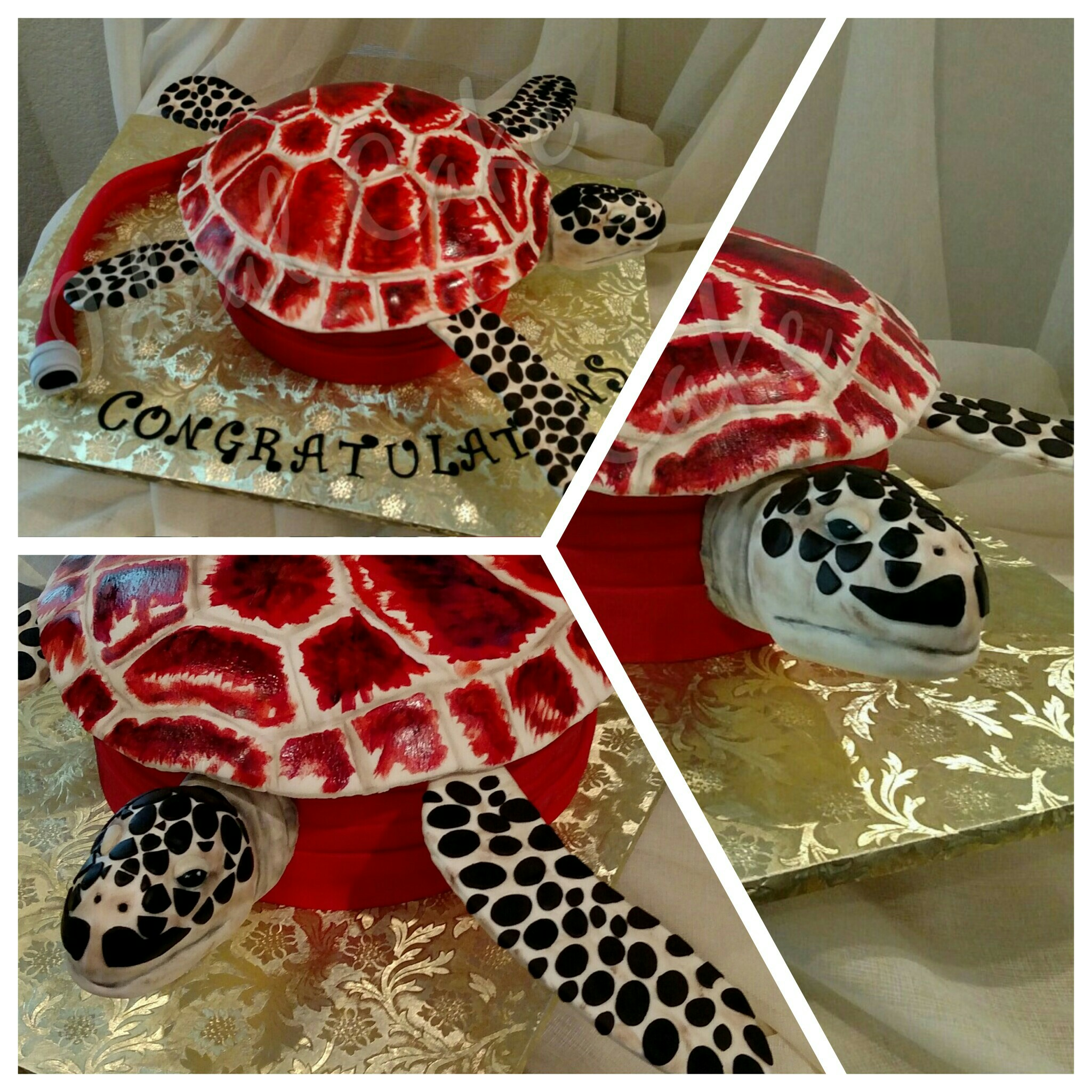 Fireman's Turtle