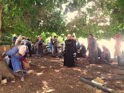 Farmers women in Jordan Valley at 45 degrees heat_edited