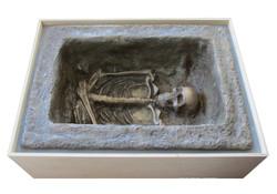 viking dig box