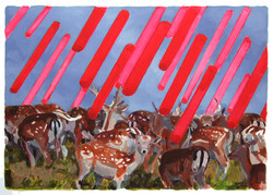 deer ray [acrylic on paper]