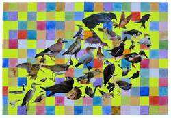 bird pattern 1