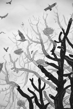 crow tree detail [ink on paper]