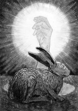rabbit hand 2 [charcoal on paper]